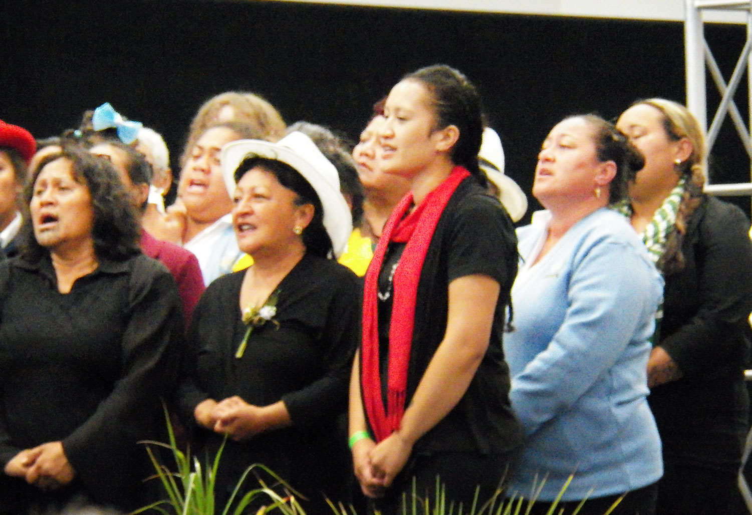 Maori Easter hui: Stewardship in action Archdiocese of Wellington
