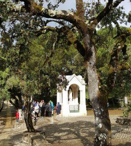 A pilgrimage to Fatima Archdiocese of Wellington