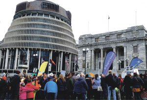 Teachers from Catholic schools join protest rally at Parliament Archdiocese of Wellington