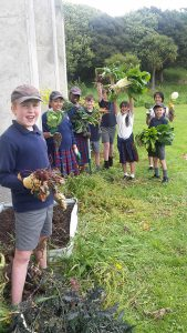 How their garden grows Archdiocese of Wellington