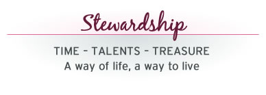 Stewardship Programme Archdiocese of Wellington