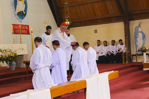 Diocesan Priesthood Archdiocese of Wellington