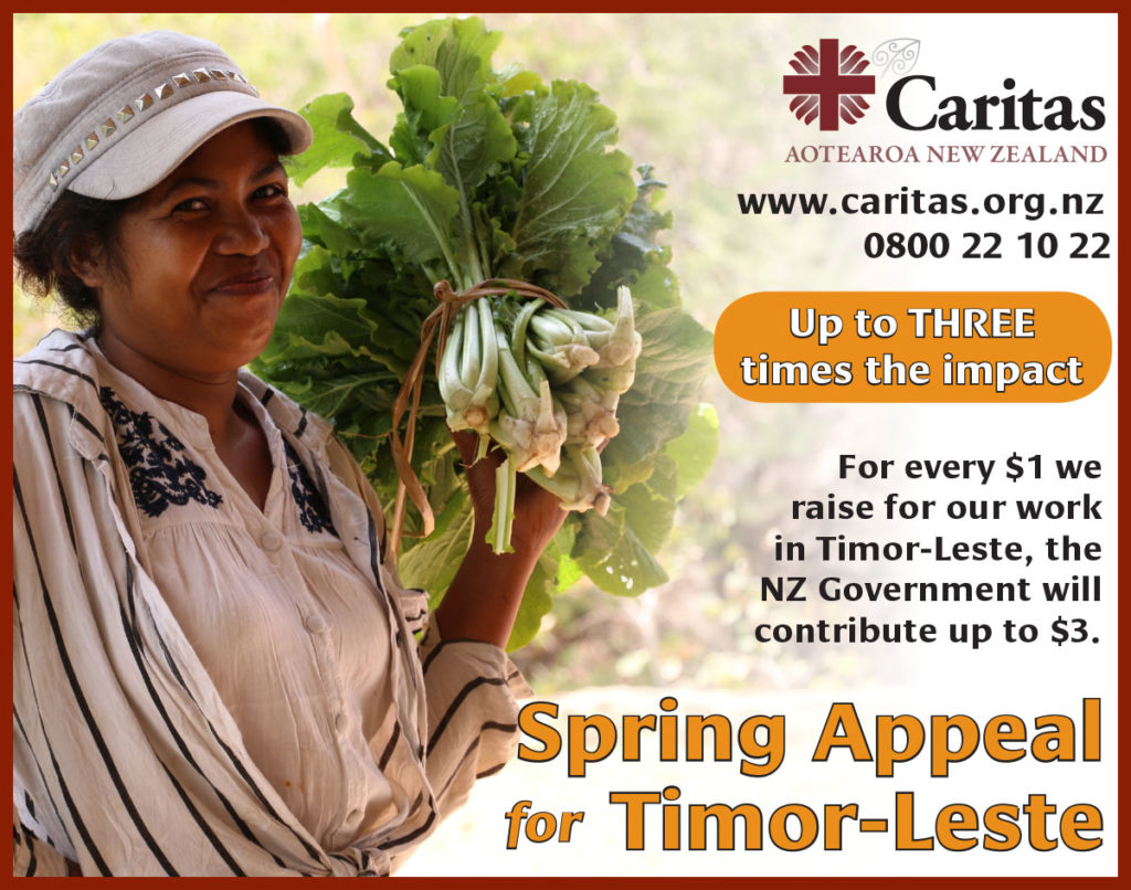 Missionary partnership: Caritas in Timor-Leste Archdiocese of Wellington