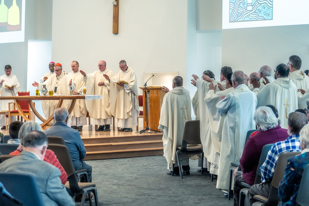 Dioceses celebrate Chrism Mass together Archdiocese of Wellington