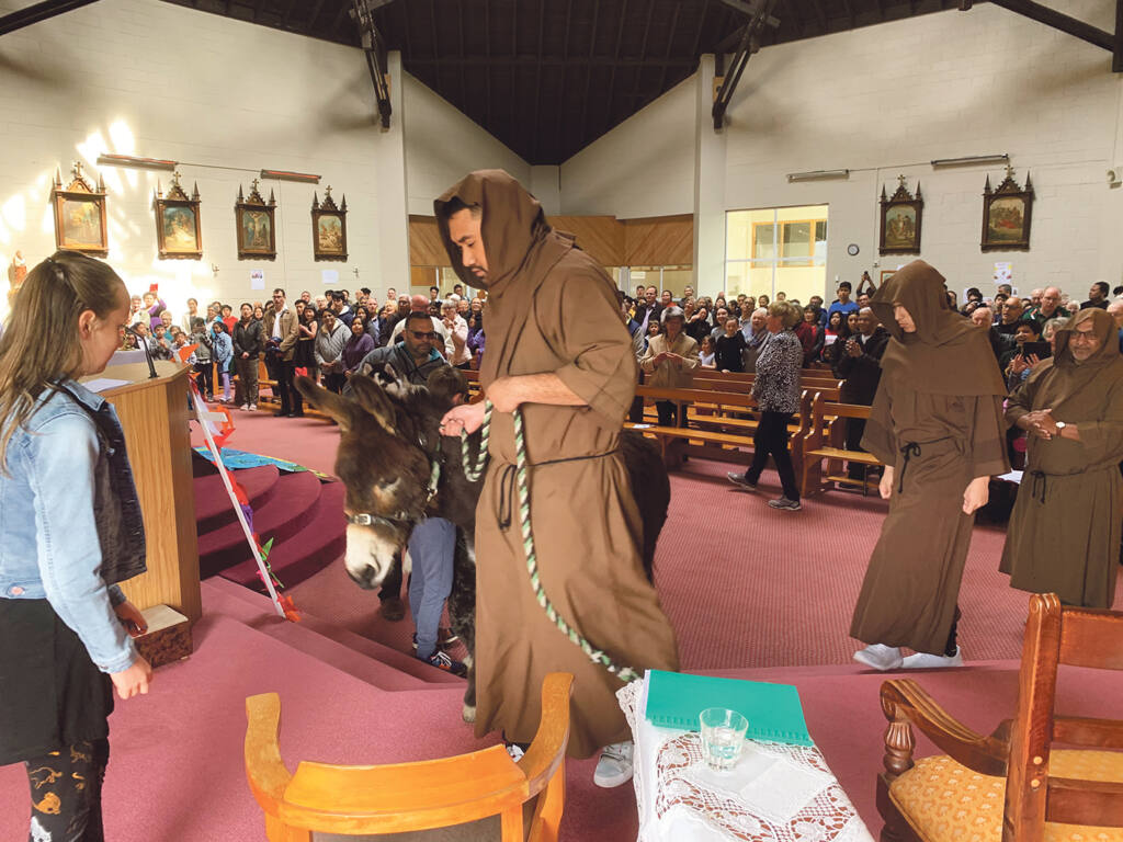 Blessing of the animals Archdiocese of Wellington