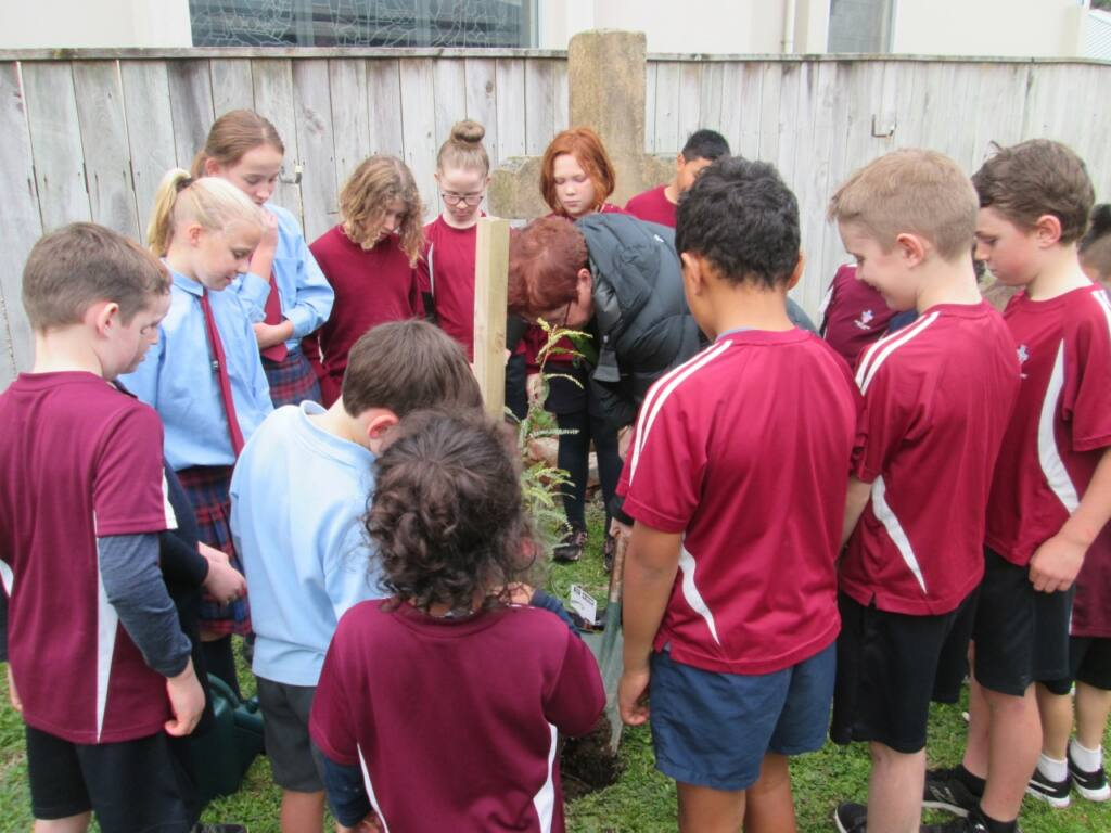 Laudato Si' in the Archdiocese Archdiocese of Wellington